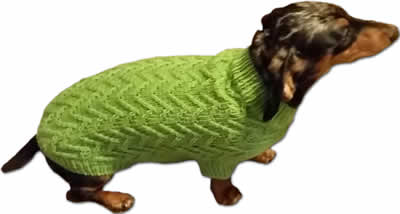 Picture of Chevron Dog Sweater Pattern